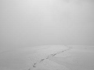 snow_320x240